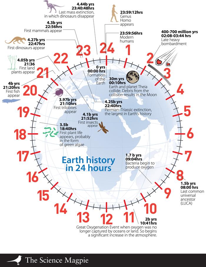 Более мелкие и слабые животные беспорядочно распространяются по земле, рождаются и исчезают.