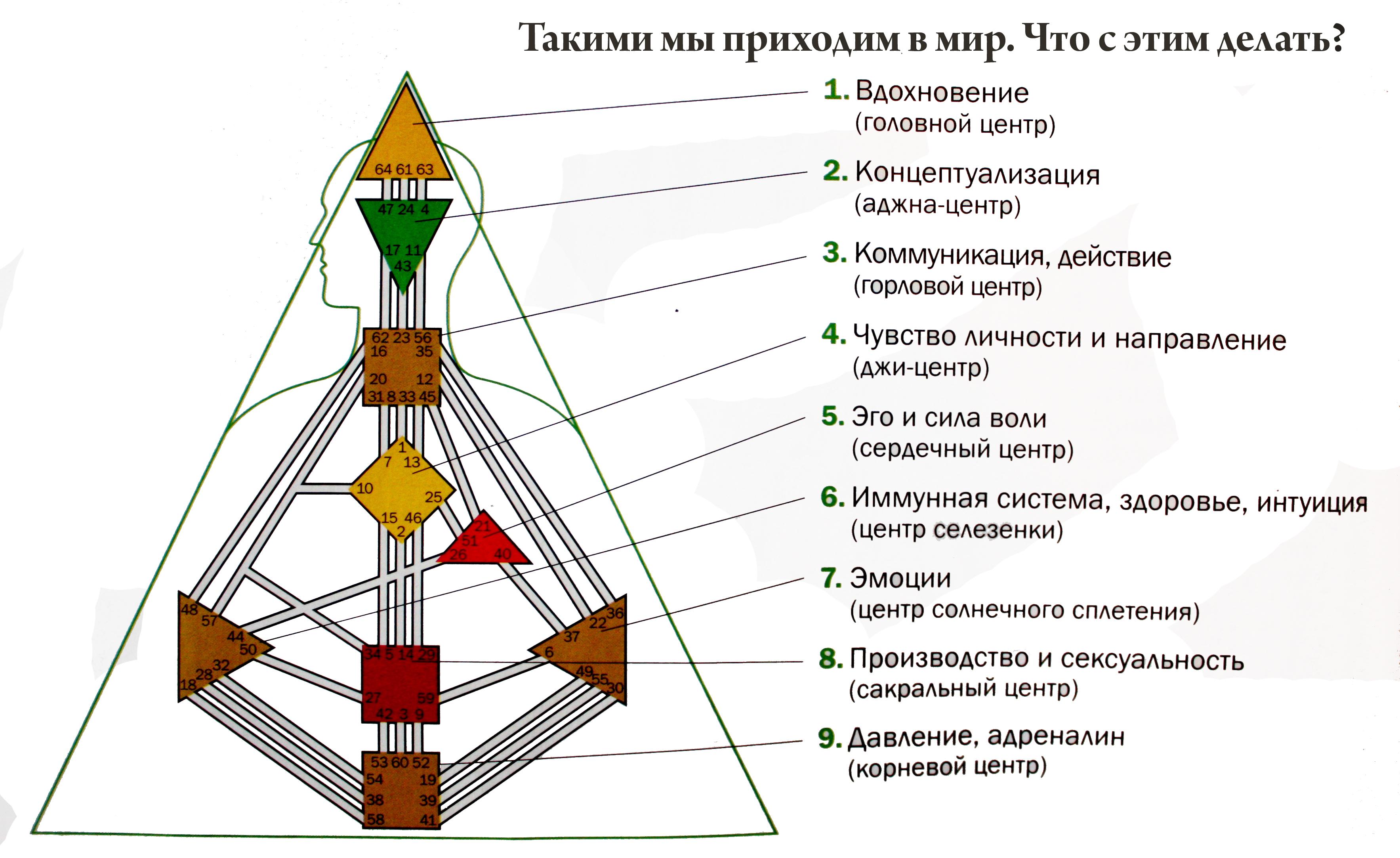 Дизайн человека описание каналов