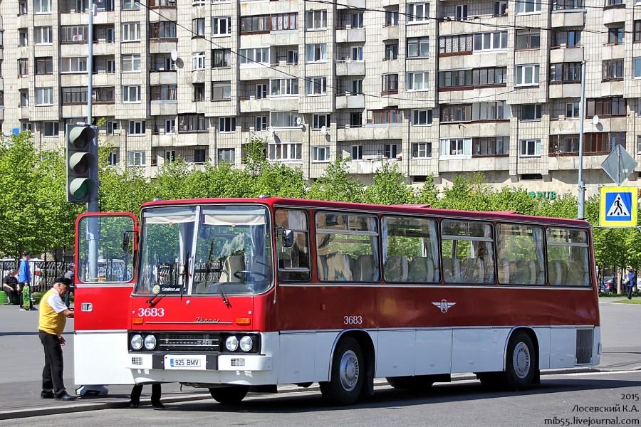 Ikarus-255.jpg
