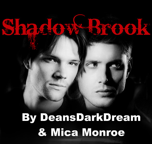Shadow Brook J2 Banner