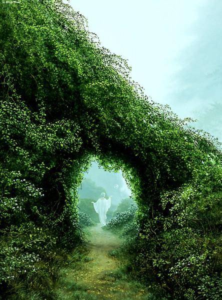 Удивительный мир растений