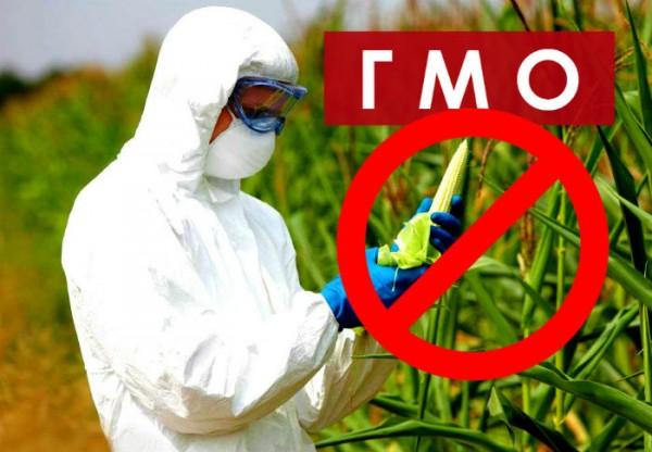 Почему слуги паразитов усиленно пиарят ГМО?
