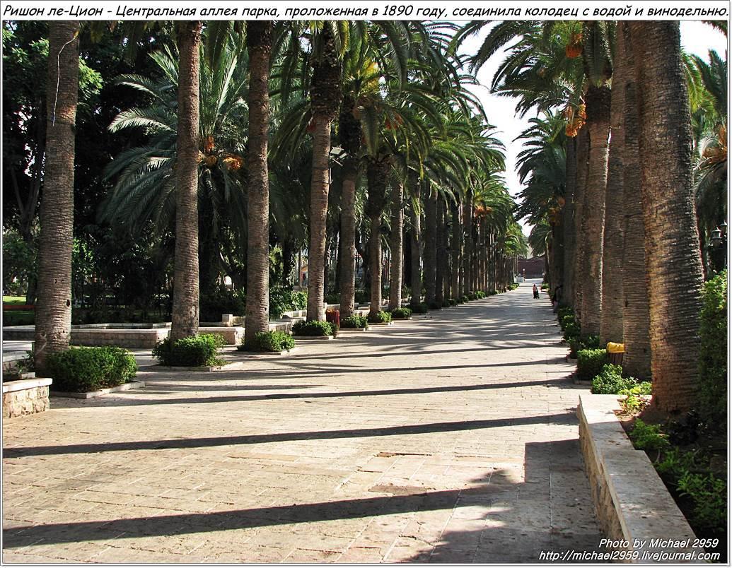Sity Park