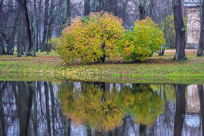 oranienbaum-0169