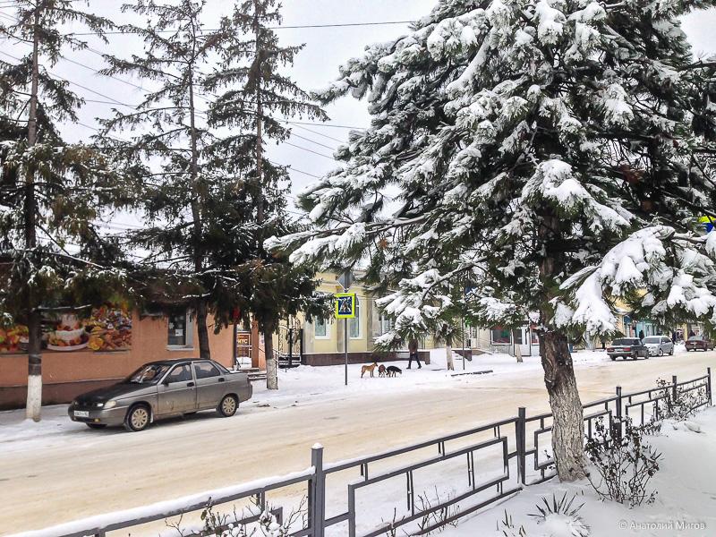 Хорошо начался год в Крыму: ураган, метель, отключение света...