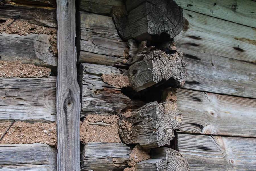 dom-dovlatova-0310