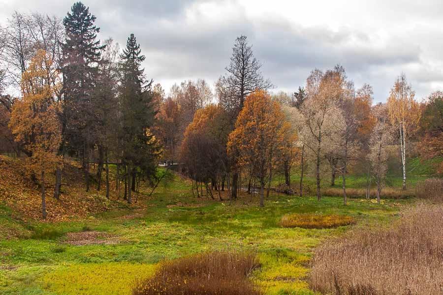 oranienbaum-autumn-0082