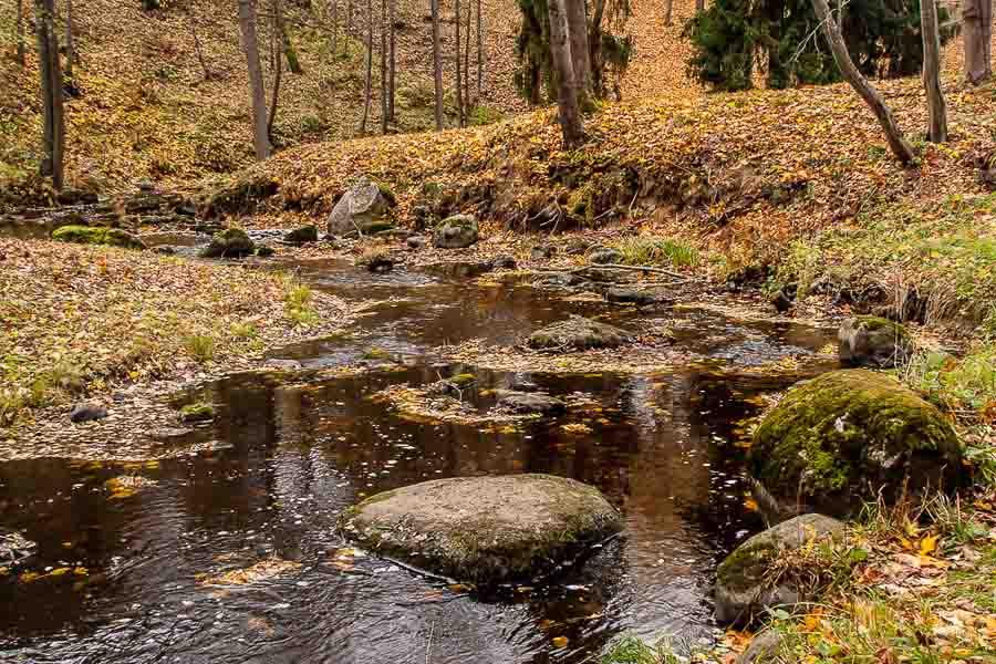 oranienbaum-autumn-0118