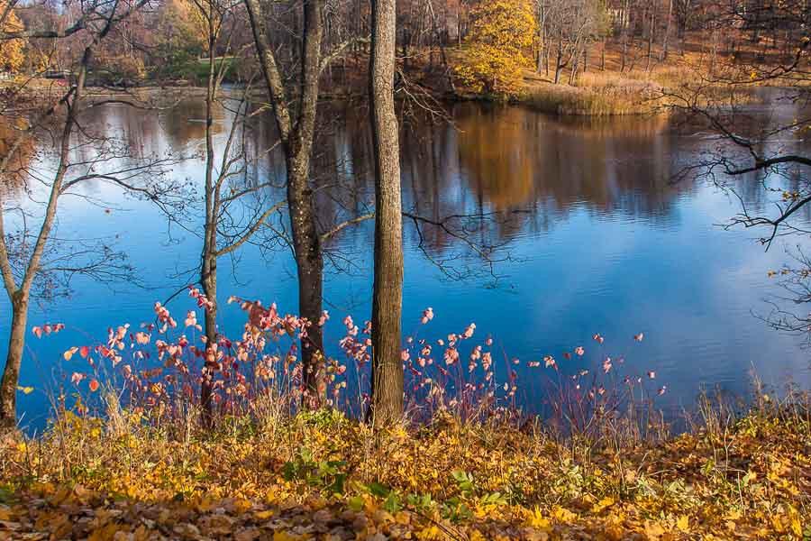 oranienbaum-autumn-0274