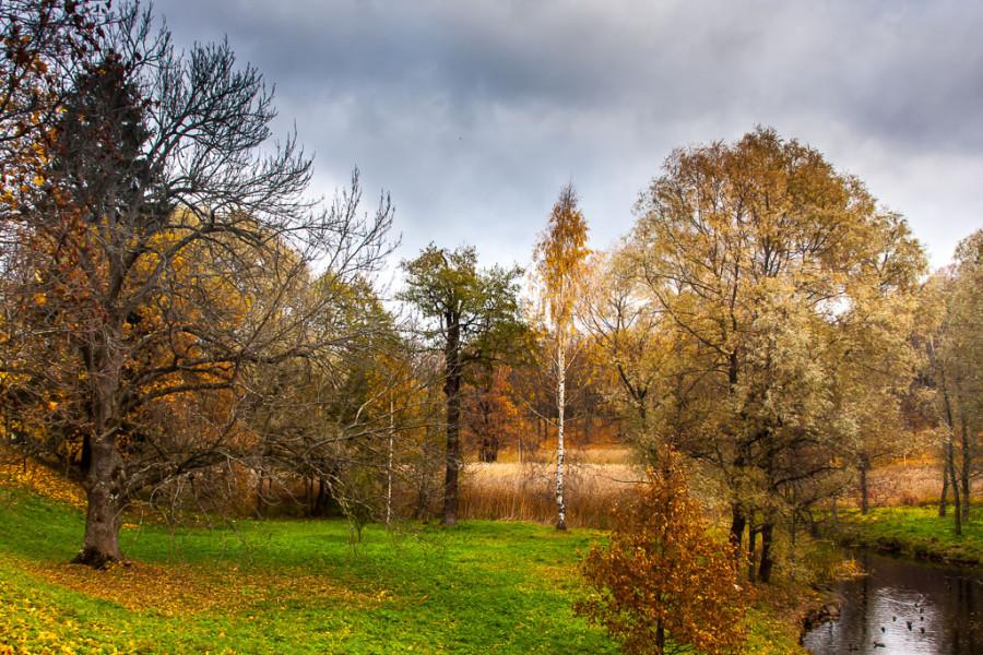 autumn-0148