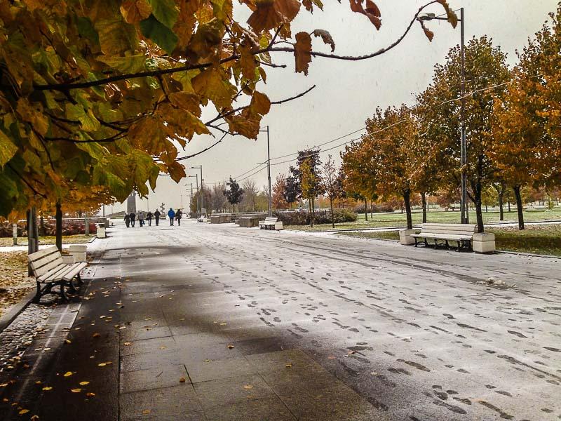 snow-2405