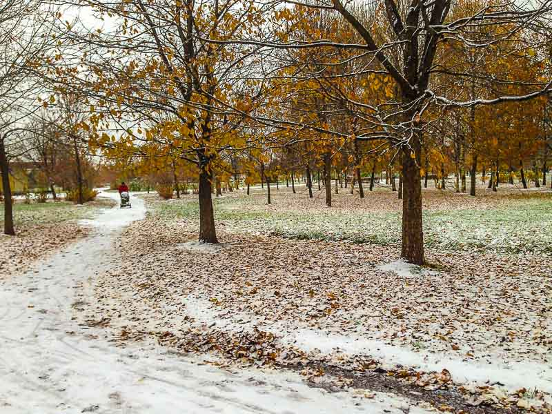 snow-2475