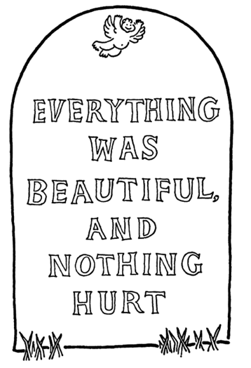 everything-was-beautiful-and-nothing-hurt