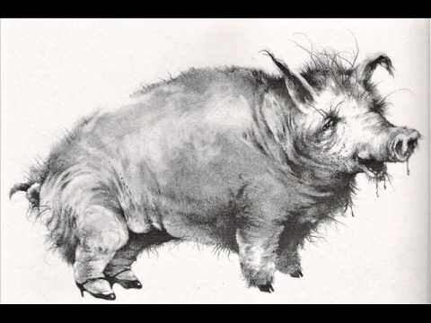 The-Hog