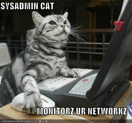 monitorz