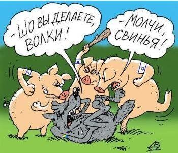 WolfAndHogs