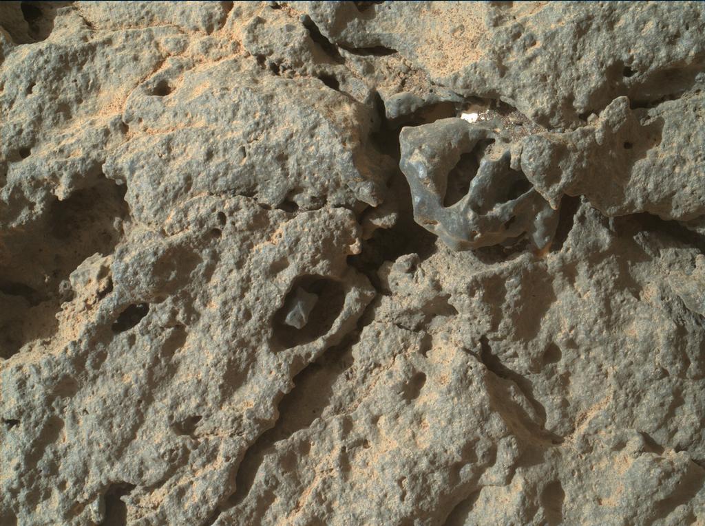 pia17267_MAHLI-sol303-br2