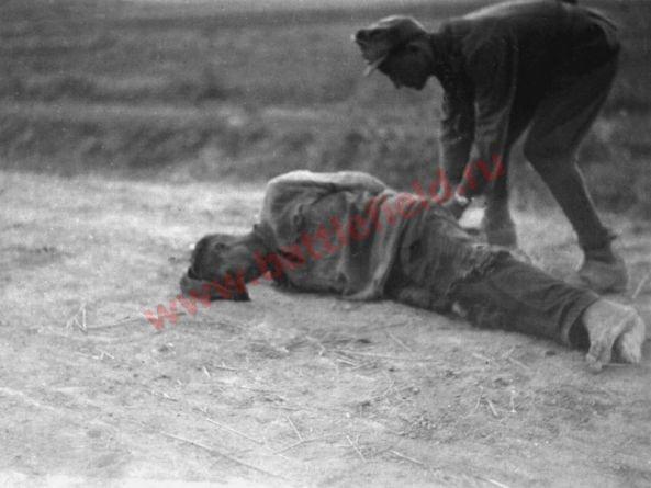http://ic.pics.livejournal.com/mihalchuk_1974/69228826/117718/117718_900.jpg