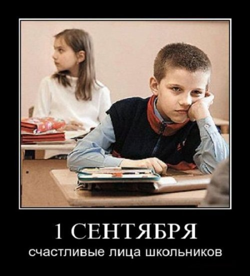 _2484affda0c15a77237b50f5b44