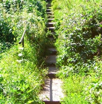 Улицы нет, а лестница в гору, в город сохранилась.