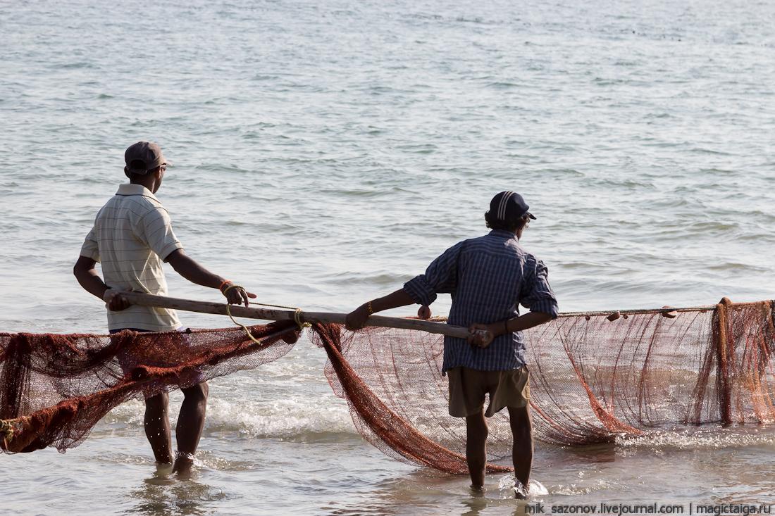 рыбаки тянут невод