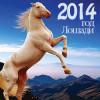 Лошадь-2014