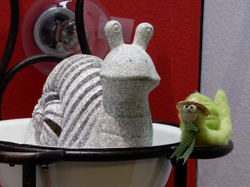 snail-qpr