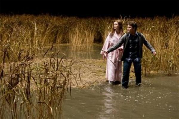 Гарри спасает Джинни во время налёта пожирателей
