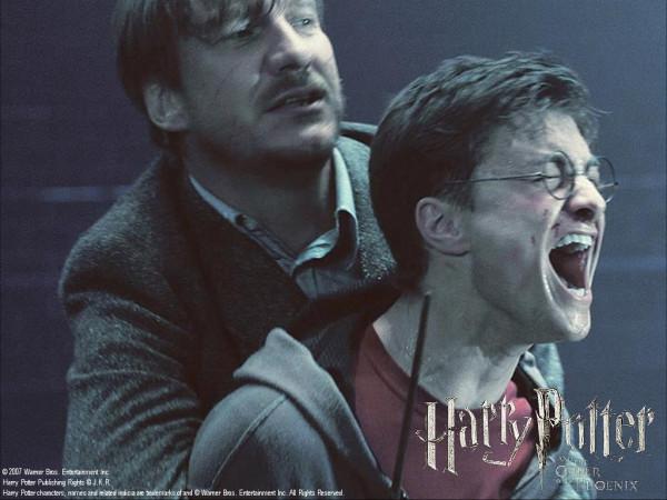 Гарри в отчаянии