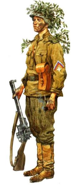 Северо-Западная Армия Юденича 1919