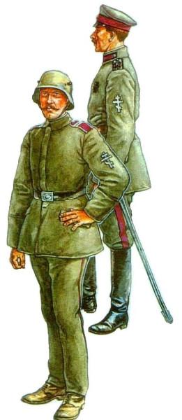 Белые войска на Западе России 1919