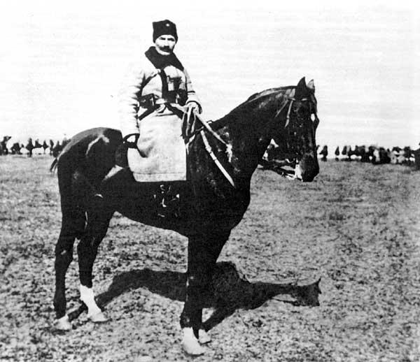 Будённый на коне