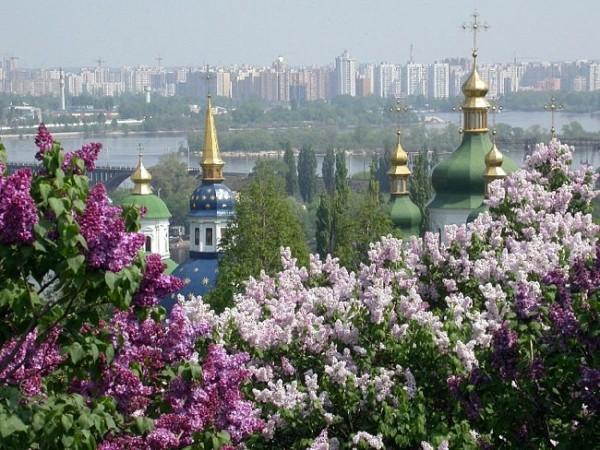 Киев в цвету