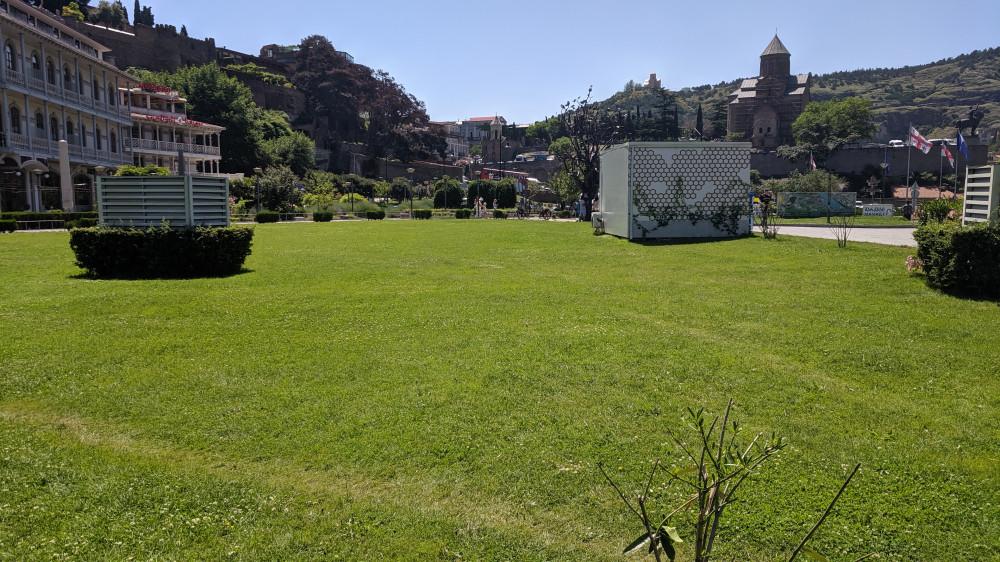 Зеленая трава в парке Рике