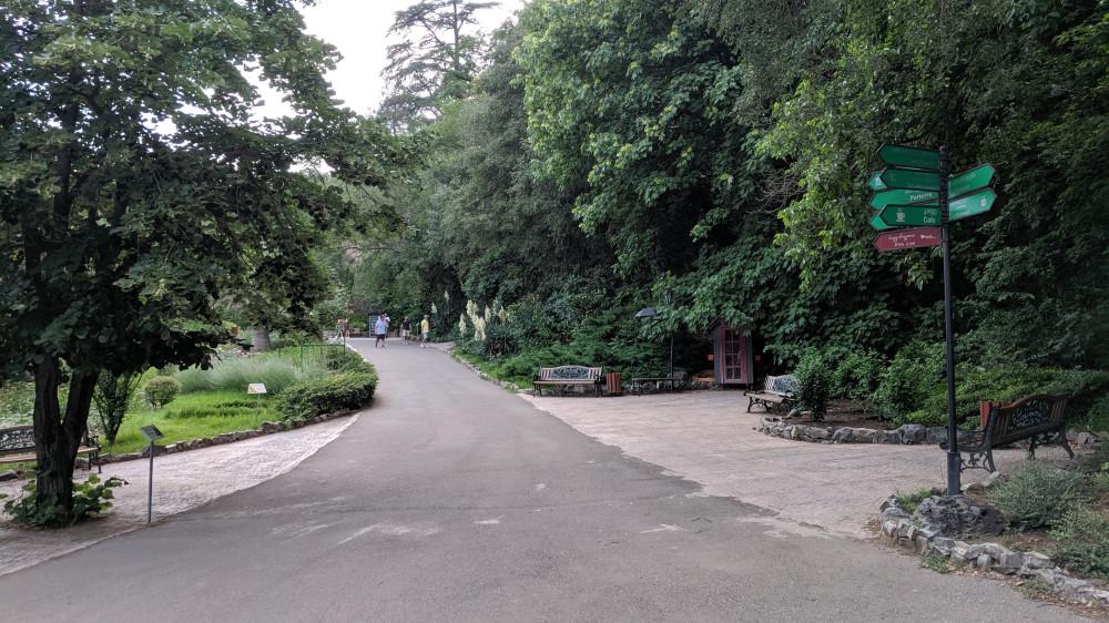 В Ботаническом саду.