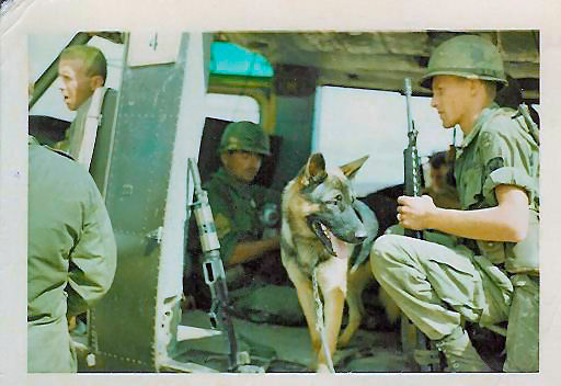 Clipper-Scout-Dog-Vietnam-1967