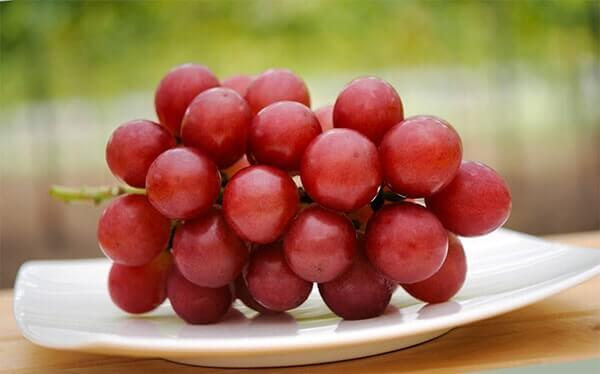 vinograd-rubinovyy-rimskiy-opisanie-sorta-foto-600