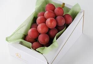 vinograd-rimskiy-rubin-opisanie-sorta-foto-300
