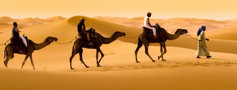 Пустынный путь