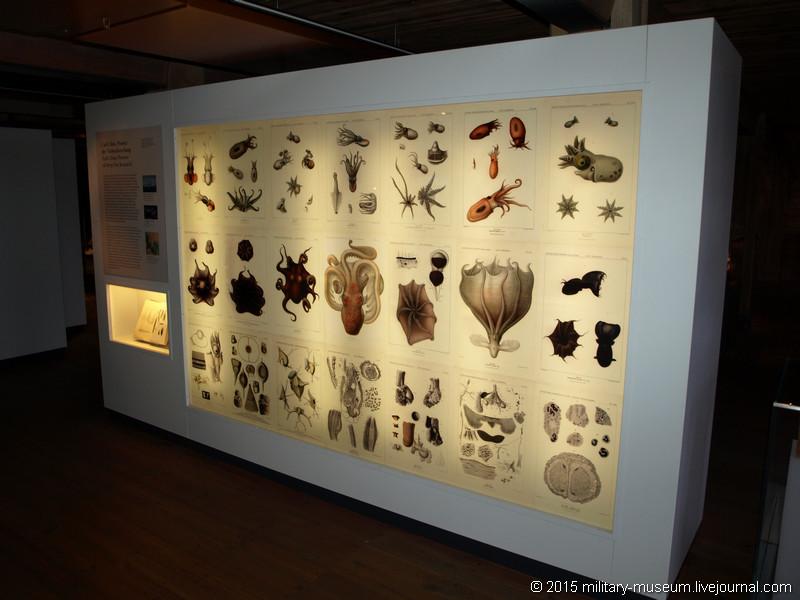 Hamburg Maritimes Museum - Part 2-2015-05-29_011.jpg