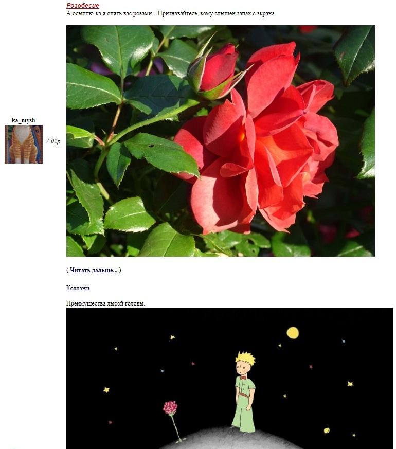 два поста-розы