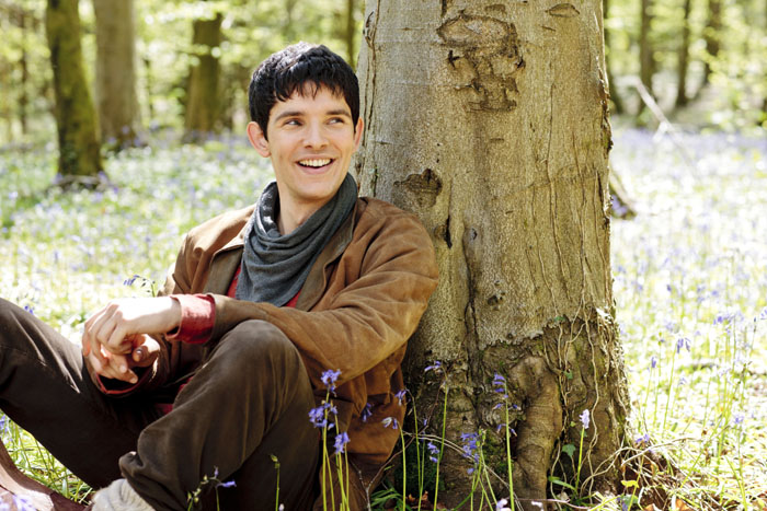 series 5 promo cheerful merlin small