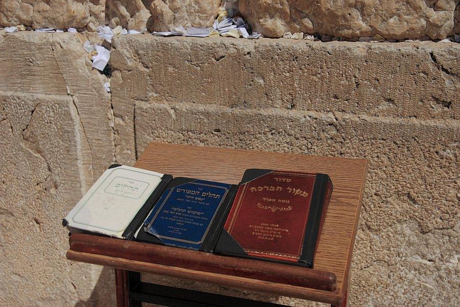 Иерусалим. Стена плача. Крупно