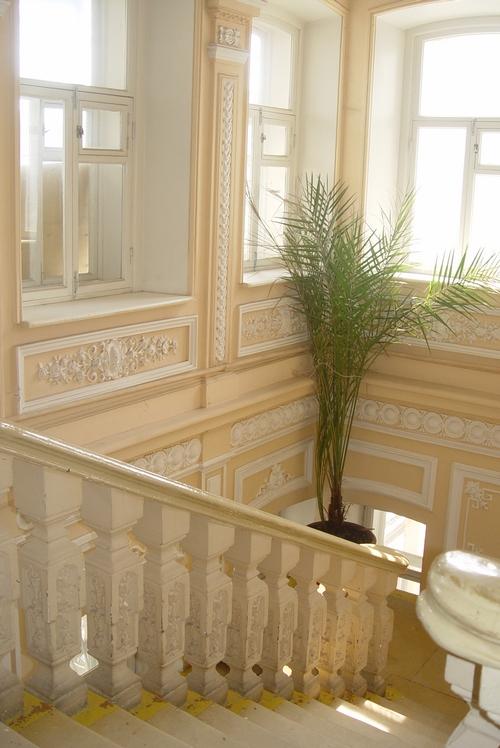 Дом Чеснокова . Лестница 2