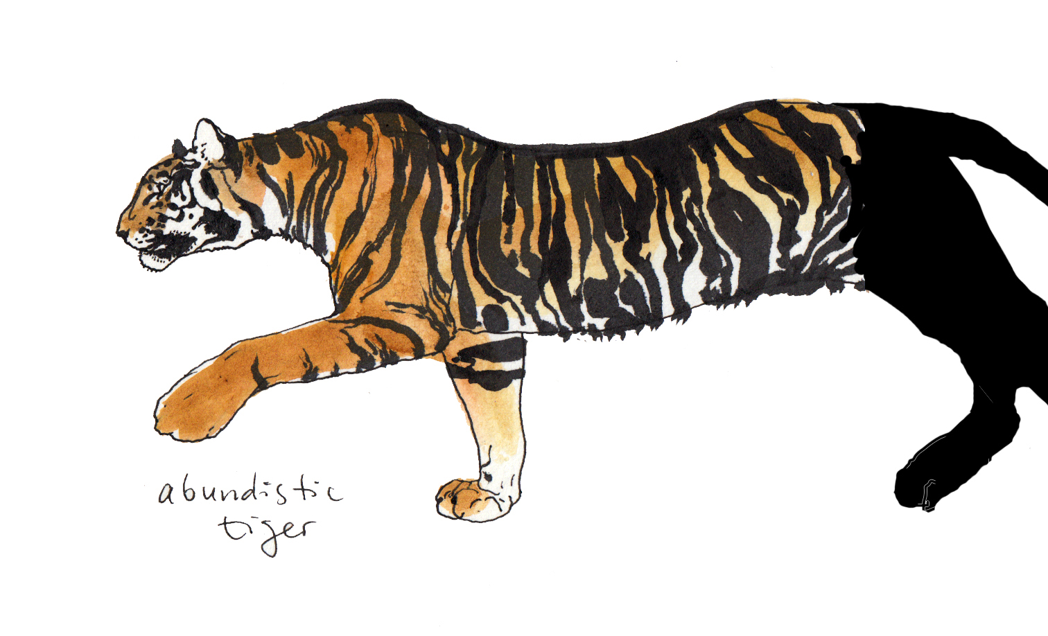 abundistic tiger