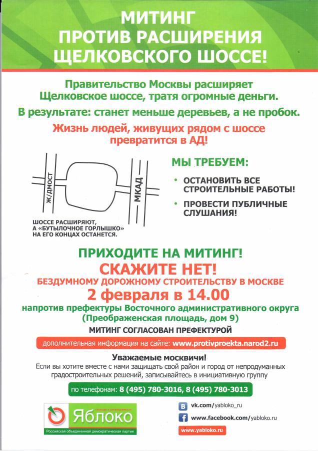 митинг02022013