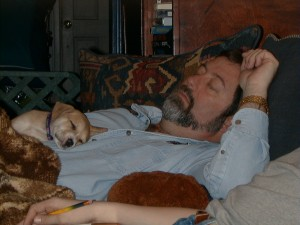 A picture of Flood napping on Flar's lap.