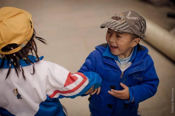 жизнерадостные тибетцы