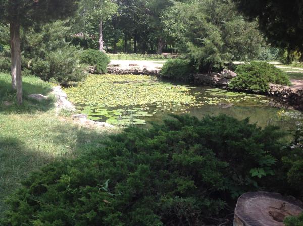 воронцовский парк 065