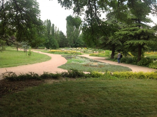 воронцовский парк 082